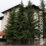 Apartmani Bogdan